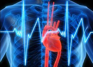 Влияет ли алкоголь на нарушение сердечного ритма