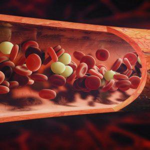 Сколько держится алкоголь в крови после запоя