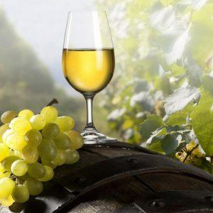 «Ангелы» и «демоны» белого вина