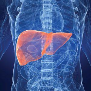 Причины портального цирроза печени