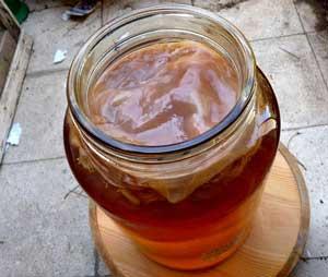 Можно пить чайный гриб закодированным от алкоголизма как помогает матрона от алкоголизма