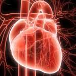 Алкогольный кардиосклероз