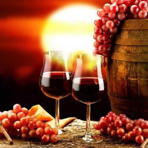 Биодинамическое вино – чуть больше, чем натуральное