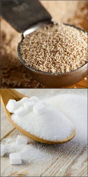 Дрожжи и сахар