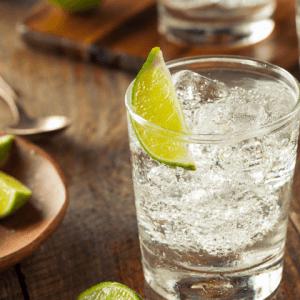 Джин: что нужно знать о напитке и чем заменить тоник в алкогольных коктейлях?